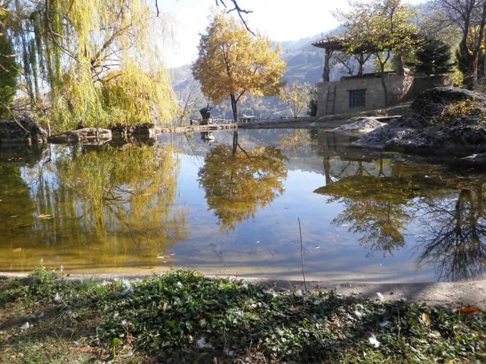 Fokea Farm